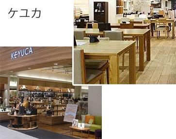 fujisawa-keyuka